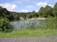 Muehlbach
